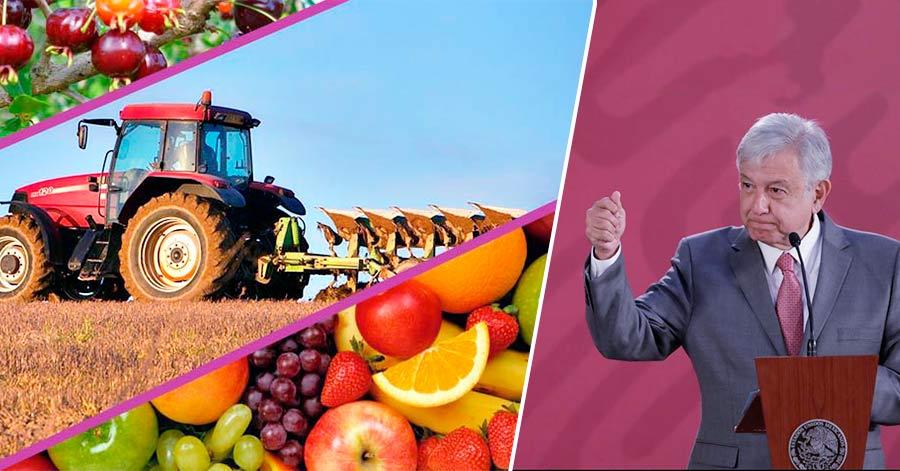 Histórico: Por primera vez, México ingresa al Top 10 de países exportadores agroalimentarios